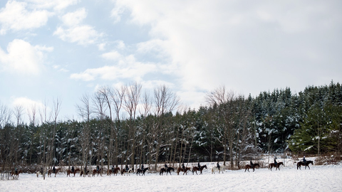 A trail ride through the Headwaters of Caledon